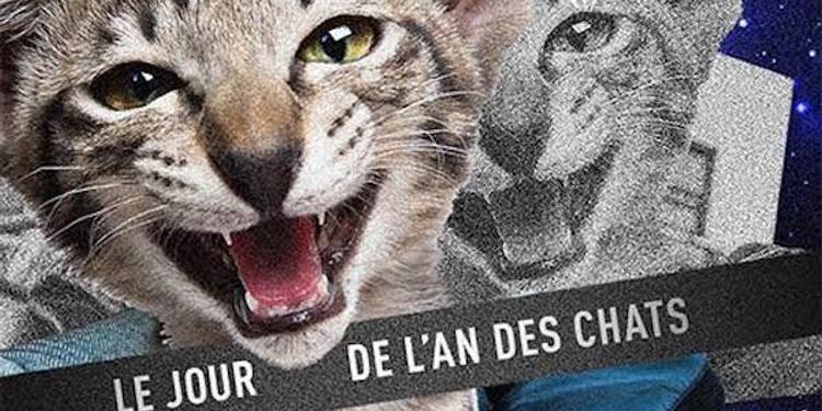 Fantasc - Le jour de l'an des chats