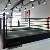Sweat Boxing