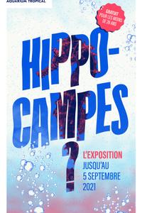 Hippocampes - Palais de la Porte Dorée - du mardi 1 juin au dimanche 5 septembre
