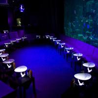 L'Aquarium Club