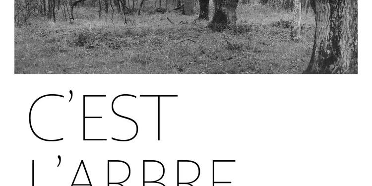 """Exposition de photographies argentiques """"C'est L'Arbre"""""""