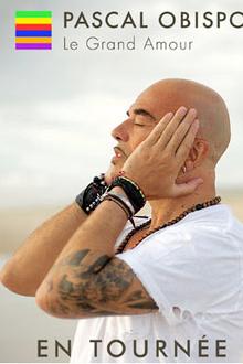 Pascal Obispo en concerts