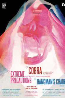New noise in france #2 : Cobra + extreme precautions + guests