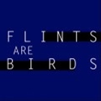 Flints Are Birds F.