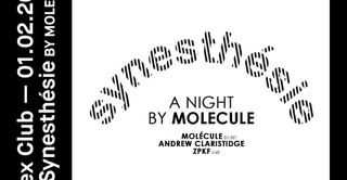 Synesthesie: A Night by Molecule with Andrew Claristidge & ZPKF
