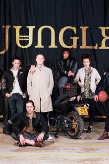Jungle en concert