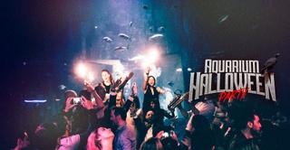Aquarium Halloween Party