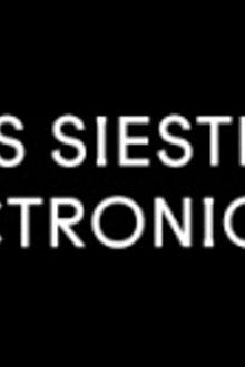Les Siestes Électroniques 2014