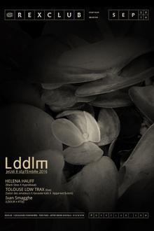 LDDLM