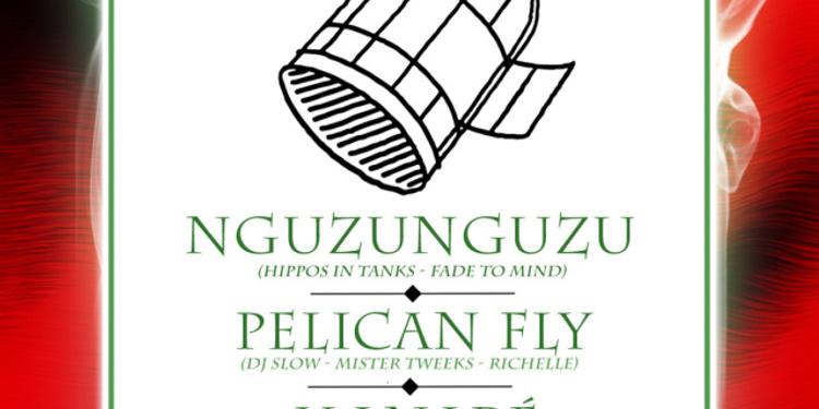 Pelican Fly x 55DSL