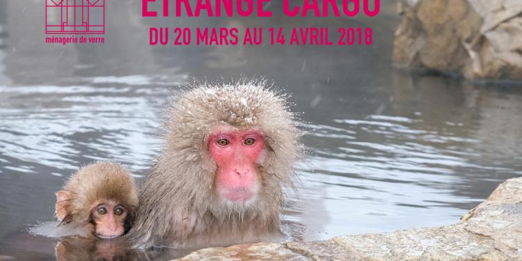 Etrange Cargo 2018