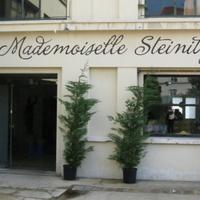 Mademoiselle Steinitz