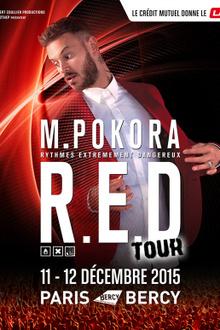 M Pokora en concert