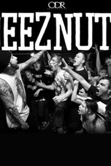 Bout it tour 2013 with deez nuts + Stray From the Path