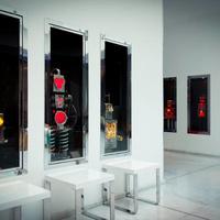 Galerie Brauer