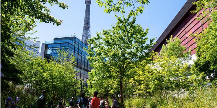 Rendez-vous au jardin - Musée du Quai Branly Jacques Chirac - du 8 ...
